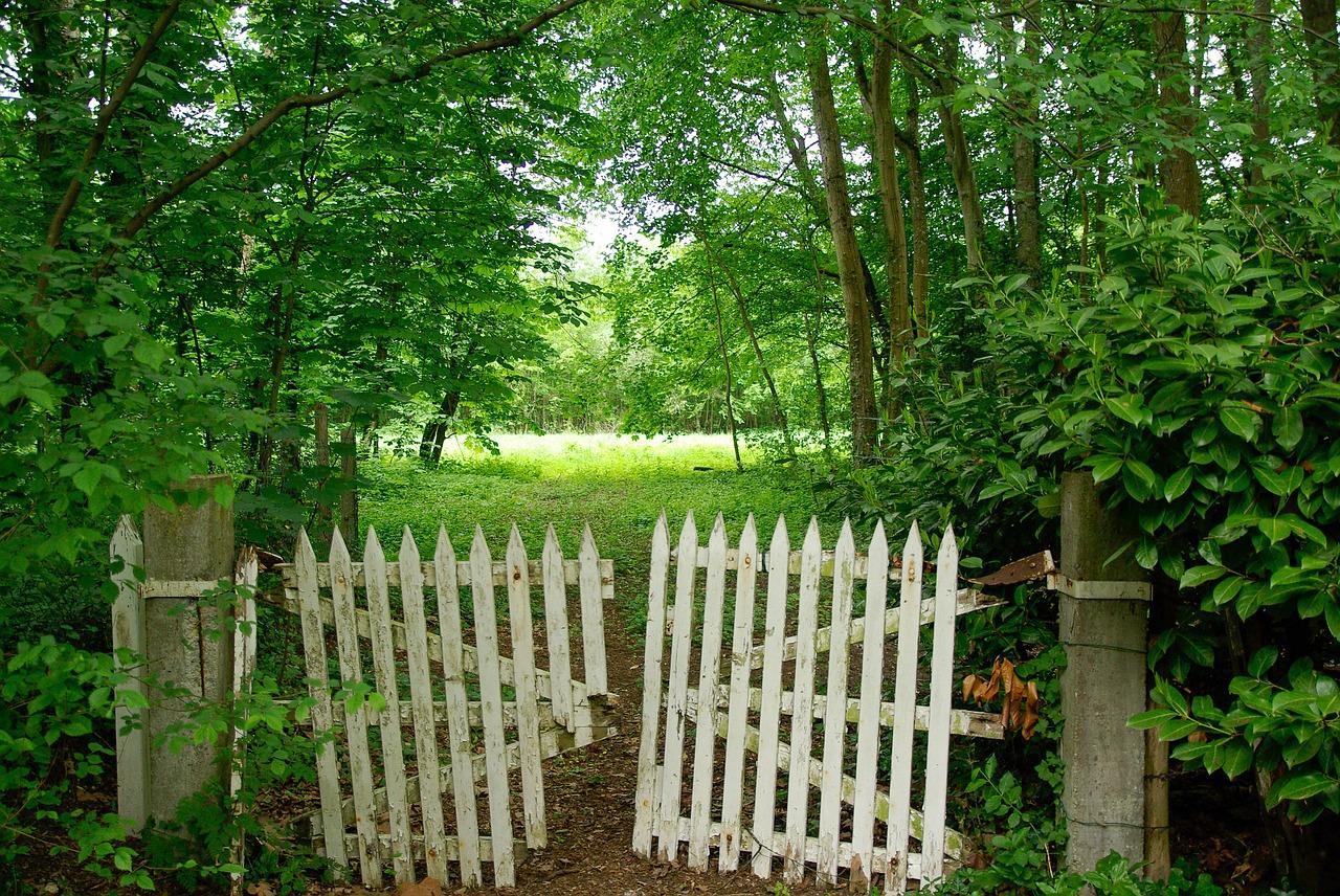 Comment bien entretenir son portail en bois ?